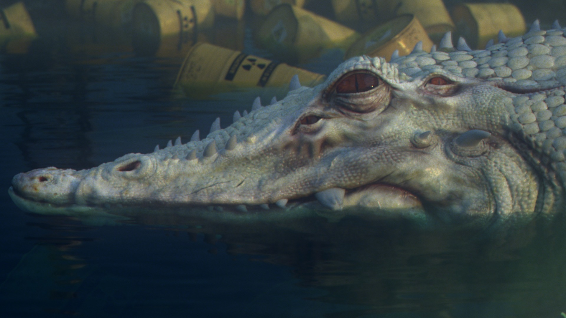 albino_crocodile_comp_v029_003