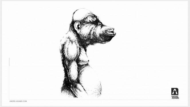 monkey_007