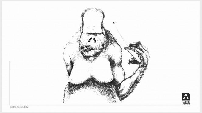 monkey_008