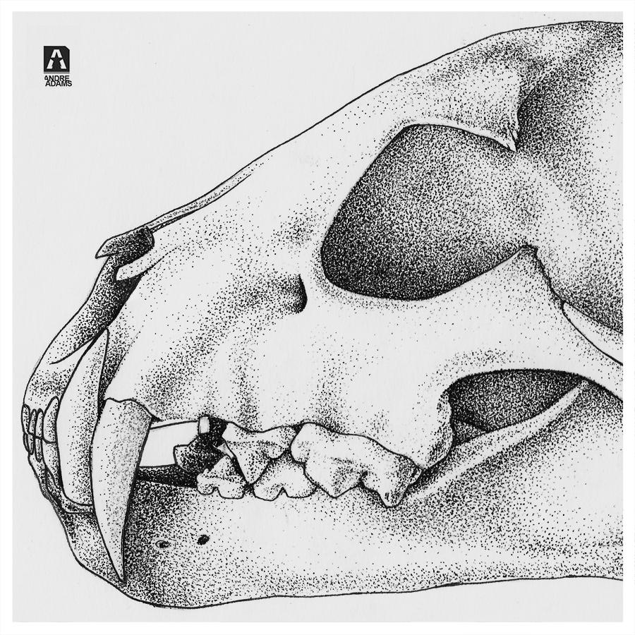 animalSkull Pointillism Detail 01