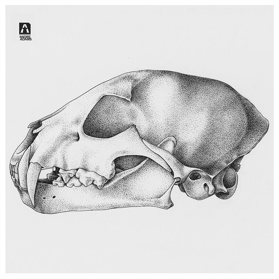 animalSkull Pointillism
